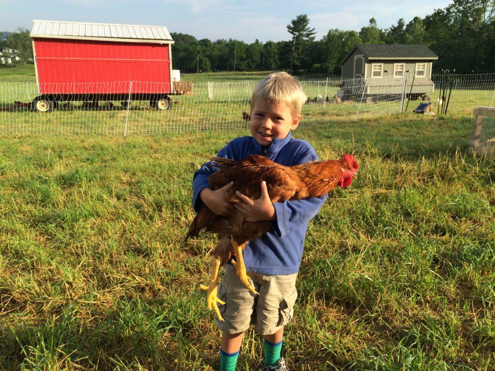 Hershberger Heritage Farm, Sellersville, PA 31.2 miles