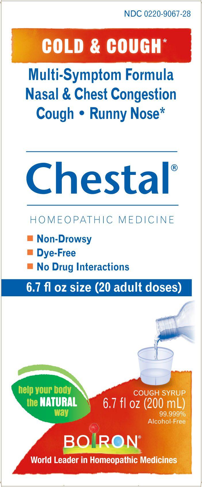 Homeopathy Boiron Kimberton Whole Foods