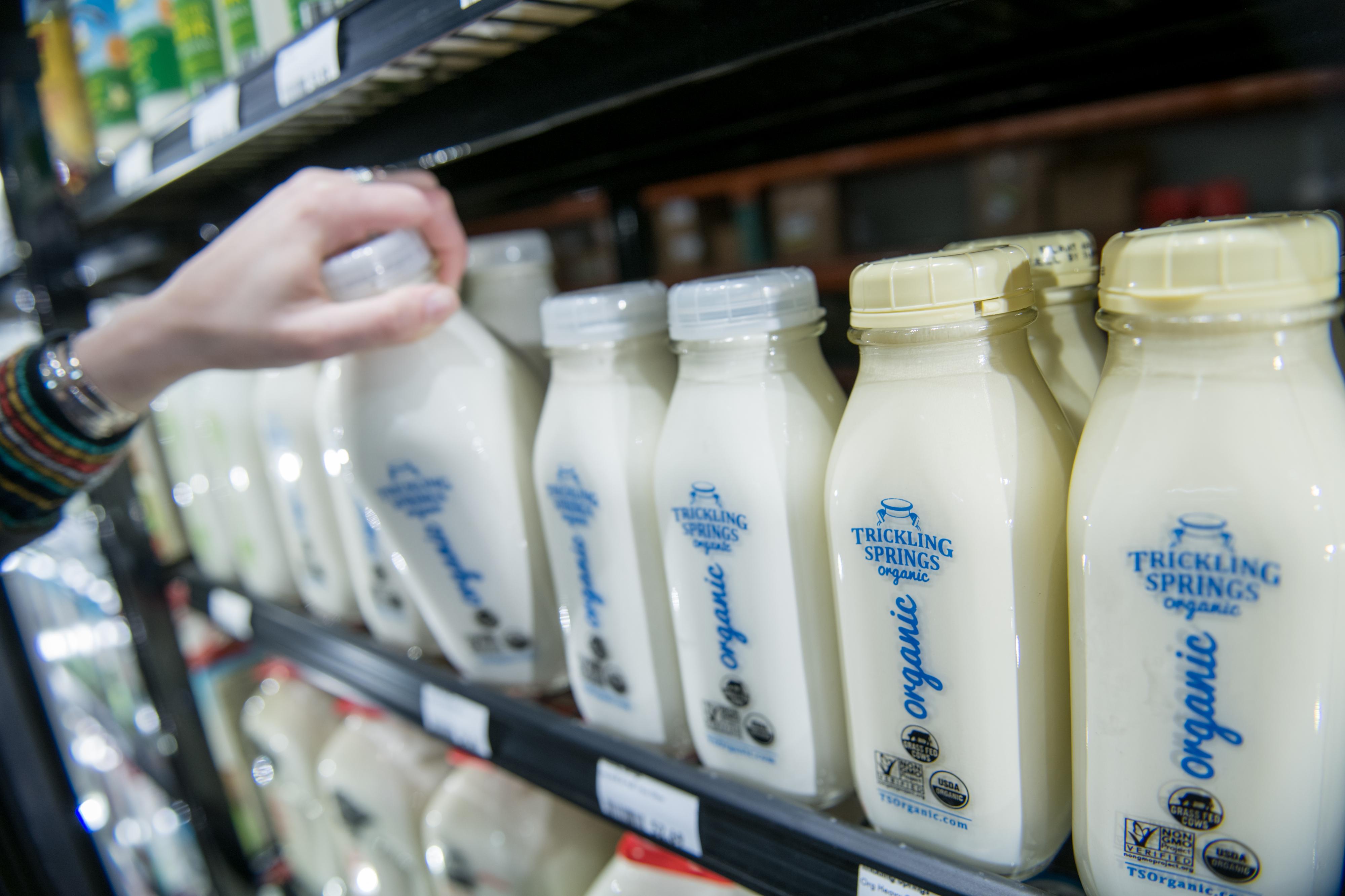 Dairy Department Kimberton Whole Foods